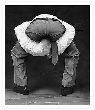 Head up ass