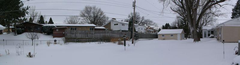 Feb 11 Blizzard Backyard