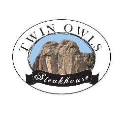Twin Owls logo
